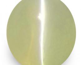 IGI Certified Sri Lanka Chrysoberyl Cat's Eye, 1.67 Carats, Oval
