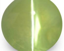 IGI Certified Sri Lanka Chrysoberyl Cat's Eye, 2.14 Carats, Round
