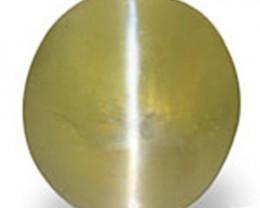 Madagascar Chrysoberyl Cat's Eye, 1.26 Carats, Greyish Green Oval