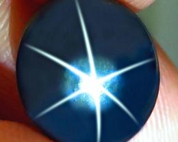 8.10 Carat Flashy Thailand Blue Star Sapphire - Gorgeous