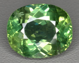 6.18 Cts Green  Apatite ~ Awesome Color and Luster ~ AT9