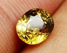 1.55Crt Natural Zircon Natural Gemstones JI32