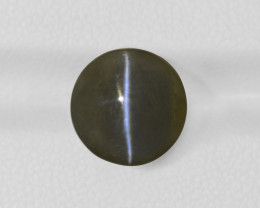 Chrysoberyl Cat's Eye, 10.16ct - Mined in India | Certified by IGI