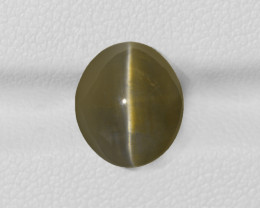 Chrysoberyl Cat's Eye, 6.75ct - Mined in India | Certified by IGI