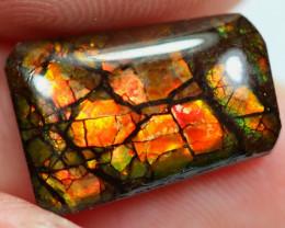 3.63cts Natural Rainbow Colour Canadian Ammolite / JU388