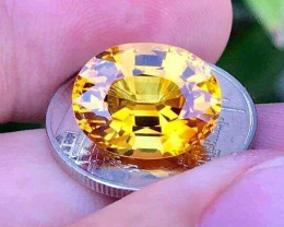 **Attention Collectors** IF 8.54ct. Stunning Yellow Sapphire