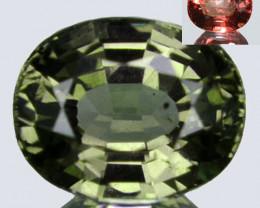 1.05 Cts Natural Color Change Garnet Oval Tanzania