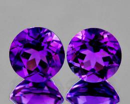 10.00 mm Round 2 pcs 7.40cts Purple Amethyst [VVS]