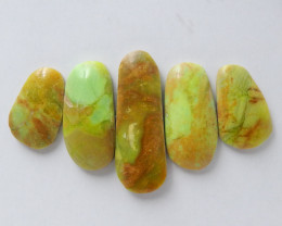 34.5ct 5Pcs Hot Sale Natural Gaspite Cabohon E10