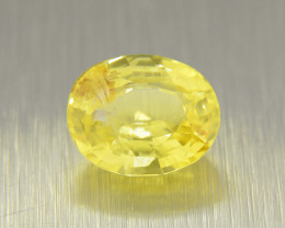 Unheated Yellow Sapphire 2.64ct ,Vivid Colour  (01624)