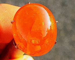 FANTA VIVID ORANGE! 27.93 CT Unheated Spessartite Cabochon (Namimbia)