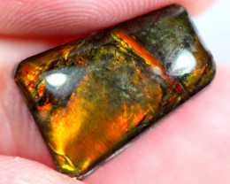4.57cts Natural Solid Multi Color Flash Canadian Ammolite / JU625