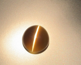 Laser Sharp Striking Ray Cat's Eye Chrysoberyl - Oval - 44ct - Srilanka - G