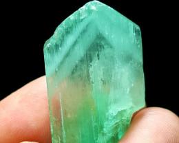 Lovely Phantom Hiddenite Kunzite crystal 70 Cts- Afghanistan