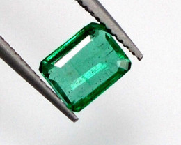 Natural Colombian Emerald - 1.05