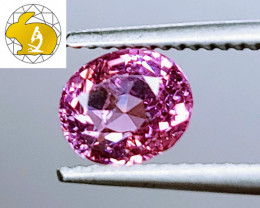 NEON COLOR! Cert. Unheated 1.51 CT Pink-Purple Mahenge Spinel FREE Shipping