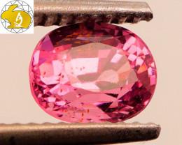 GLOWING! Cert. 1.50 CT INTENSE Pink-Purple Mahenge Spinel FREE Shipping!