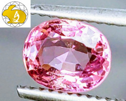 ADORABLE! GLC Certified 1.52 CT BRIGHT BABY PINK Mahenge Spinel FREE Ship!