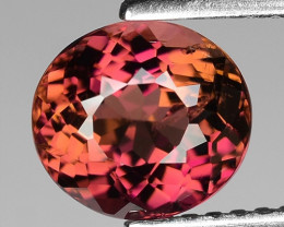 AAA Grade 1.77 Cts Sparkling Pink Tourmaline ~ Afghanistan TR11