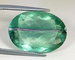 33.00 ct Excellent Gem  Excellent Oval Cut Natural Bi Color Fluorite