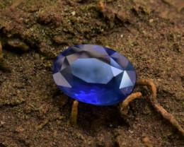 Sri Lanka Sapphire  1.60 cts