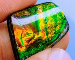 VIVID! NR! 13 Ct Red, Orange, & Green Ammolite Freeform Triplet (Canada)