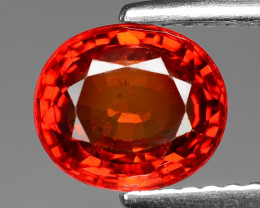 2.01 Carat Very Rare Red Color Natural Sapphire Loose Gemstone