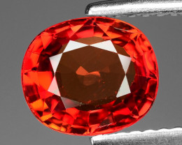 2.03 Carat Very Rare Red Color Natural Sapphire Loose Gemstone