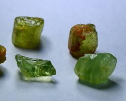24.10 CT Natural & Unheated Green Beryl rough Lot