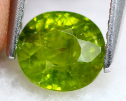 Grossular 1.24Ct Natural Green Color Grossular Garnet 17AF713