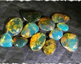Wholesale lot 12 Dominican Blue Green polished Amber Cabochons  9.2g