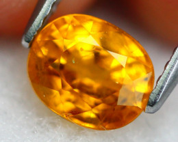 Yellow Sapphire 1.53Ct Natural Siamese Yellow Sapphire 19AF894