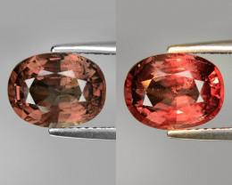 Rarest Garnet 3.76 Cts Phenomenal Full Color Change Madagascar CC1