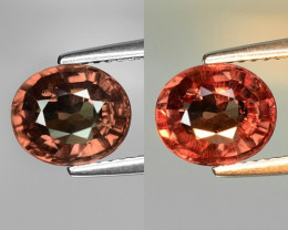 Rarest Garnet 2.61 Cts Phenomenal Full Color Change Madagascar CC4