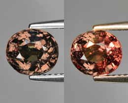 Rarest Garnet 2.33 Cts Phenomenal Full Color Change Madagascar CC8