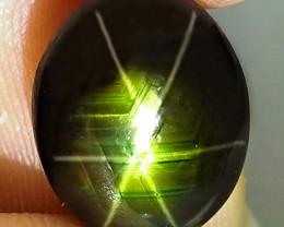 8.27 Carat Thailand Black Binary Star Sapphire - Gorgeous