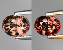 Rarest Garnet 1.75 Cts Phenomenal Full Color Change Madagascar CC15