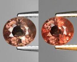 Rarest Garnet 1.48 Cts Phenomenal Full Color Change Madagascar CC16