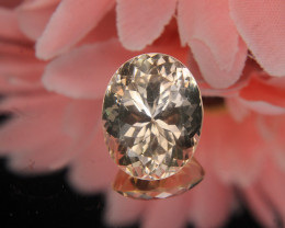 Master Cut Himalayan Topaz Gemstone Cut by Master Cutter