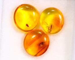 3.20cts Natural Baltic Million Years Amber / BIN292