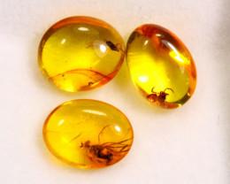 2.64cts Natural Baltic Million Years Amber / BIN298