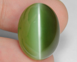 20.87 Carat Very Rare Actinolite Cats Eye Gemstone