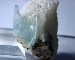 347CT Natural & Unheated Blue Aquamarine Crystal Specimen