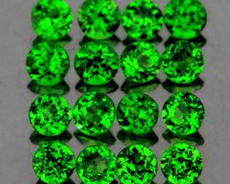 2.50 mm Round 16 pcs 1.23cts Chrome Green Diopside [VVS]