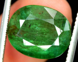Certified 10.90 Carat Top Class Green Color Oval Cut Zambain Emerald Gemsto