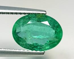 1.86 ct  IGI Certified Gem Top Grade Oval Cut Zambian Emerald