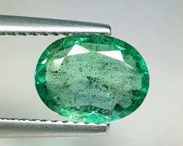 1.79 ct  IGI Certified Gem Top Luster Oval Cut Zambian Emerald