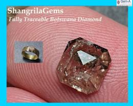 6.2mm 0.72ct diamond Dalmatian Golden Brown rose cut oblong 6.2mm by 5.9mm