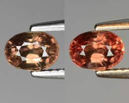 1.02 CT COLOR CHANGE GARNET TOP CLASS GEMSTONE GC34