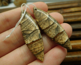 Gemstone earring matching picture jasper stone jewelry (G1526)